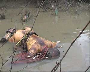 Thousands dead in massacre, body of monks dumped in the jungle